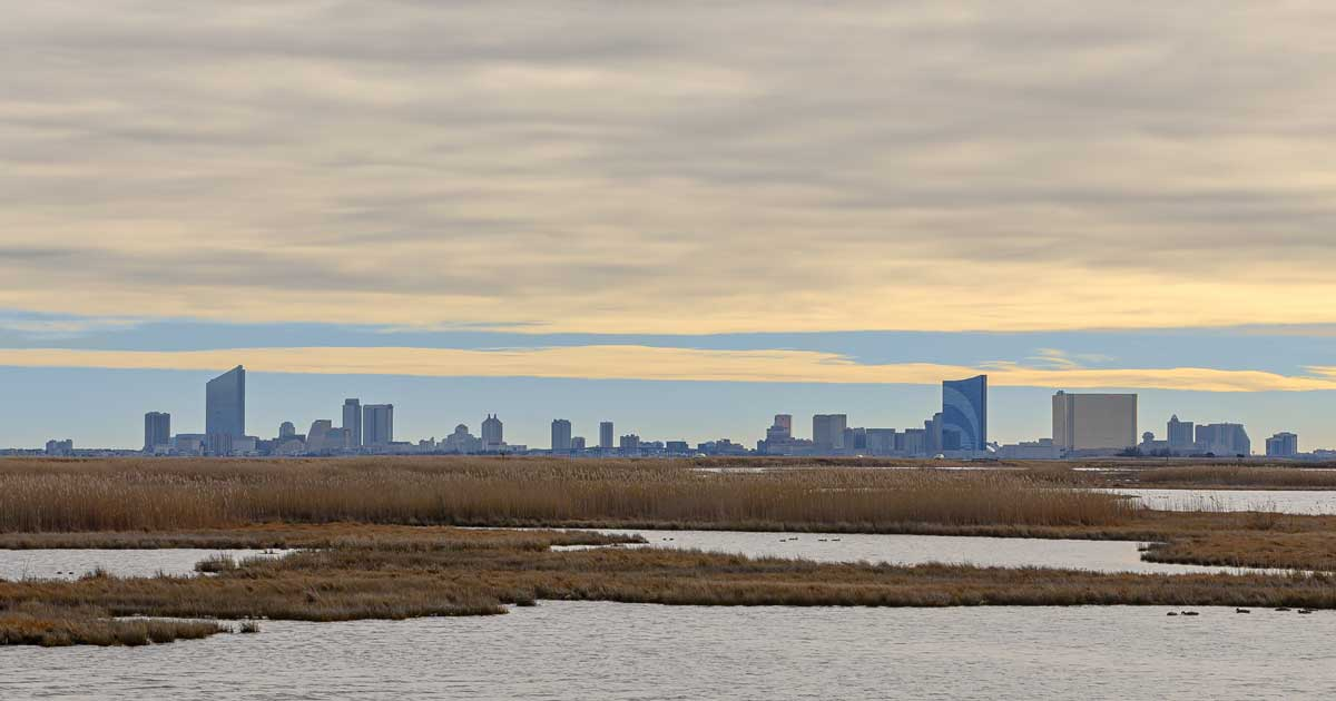 Read more about the article Exploring Edwin B. Forsythe National Wildlife Refuge