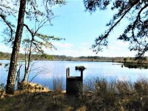 Read more about the article Abandoned Adventures at Jumping Brook Preserve
