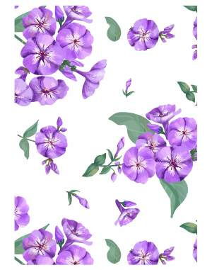 purple-phlox-welcome-board