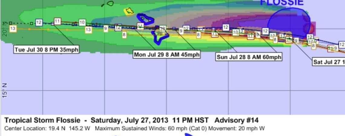 Tropical Storm Flossie 14