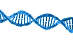【健康】DNA解析・遺伝子検査サービスについて調べてみた