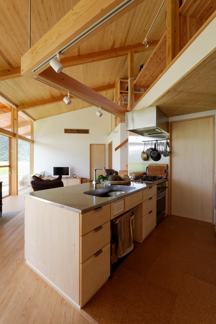 加園・片流れ屋根の家 中山大輔建築設計事務所