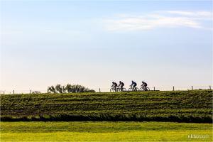 Arnhem, dave zuuring, Drielsedijk eo., Gelderland, Lucht, Vorege herfst, Drielsedijk eo., Driel, dijk, herfstkleuren, bomen, tree, westerbouwing,