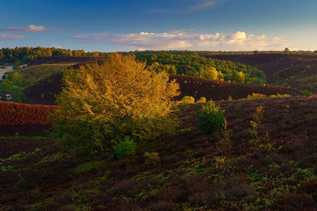 Herfst, Oktober, nldazuu fotografeert, autumn, fall, herfst