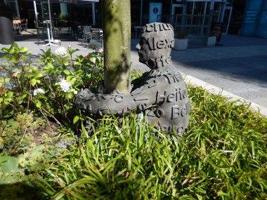 Hugging a tree (Amsterdam South)