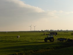 Dutch countryside (Marken)