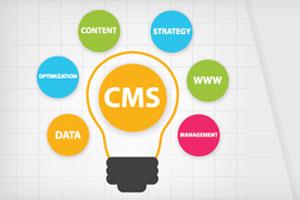 Web CMS Development | CMS Website Development