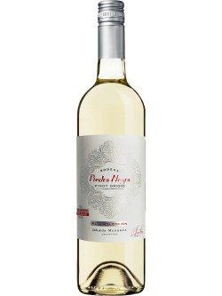 Piedra Negra Alta Coleccion Pinot Grigio