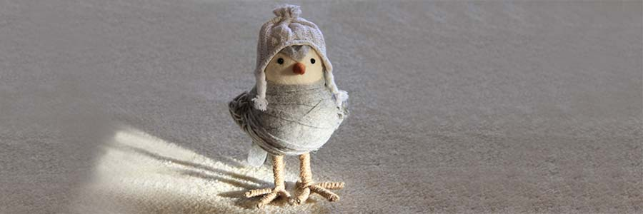 a toy duck wearing a wool sweater and hat