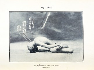 A photograph of a man in a yoga fish pose.