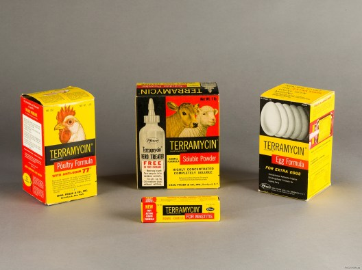 Four boxes of Terramycin treatments intended for animals including cows, sheep, chickens and eggs.