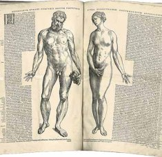 """Two facing pages of text, also including woodcuts of naked """"Adam"""" and """"Eve"""" figures."""
