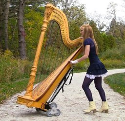 harp twins - harp transport
