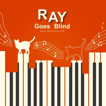 Ray goes blind - exploring NLP from successful people