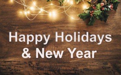 NLP Newsletter – Happy Christmas