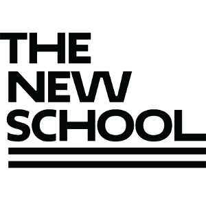The New School: A University in New York City