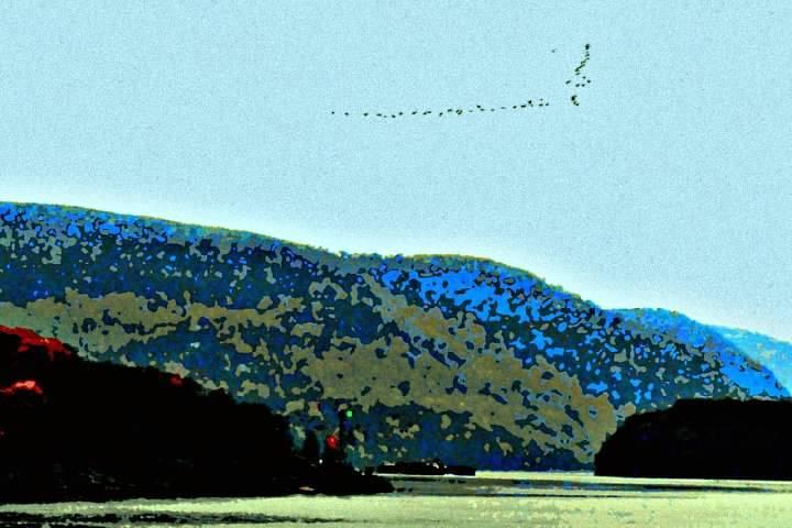 wp hudson geese blue ret