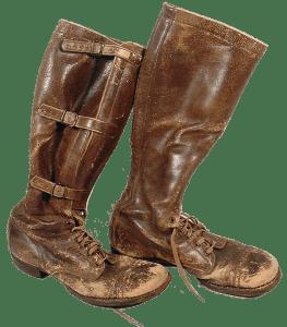 Ehrenpreis-boots