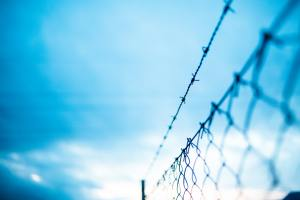 Read more about the article Border Security, Immigration and Pandemic Response