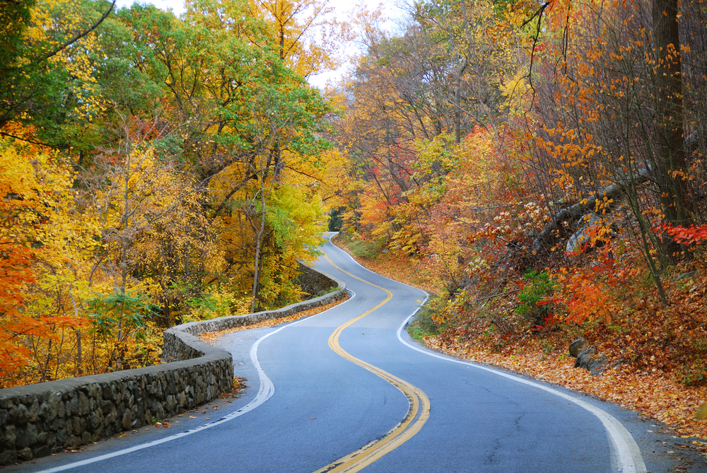 Fall Leaves Desktop Wallpaper Backgrouns Preparing For An Accessible Road Trip This Fall Nmeda