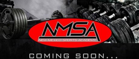 cropped-nmsa1.jpg