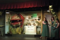 Little Shop of Horrors  The Nutz-n-Boltz Theater Company