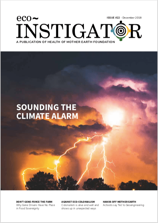 Eco-Instigator-22-cover