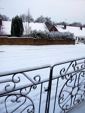 Our front gate and our street.