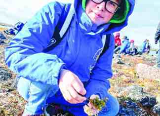 Science student Melanie Qaqqasig gathers plants for the perfect tea blend during the annual Kivalliq Science Educator's Community Science Camp in Chesterfield Inlet from Sept. 6-10, 2018. photo courtesy of Juamita Balhuizen