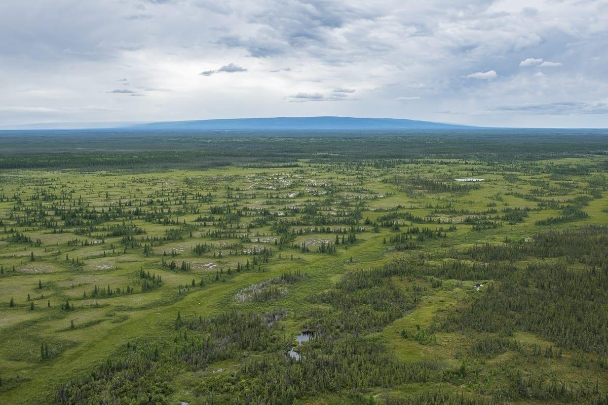Wyss foundation gives $750k to protect Edéhzhíe lands