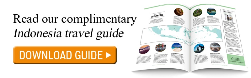 Guide to Indonesia