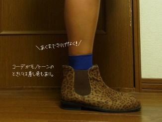 ヒョウ柄 靴の靴下コーディネート