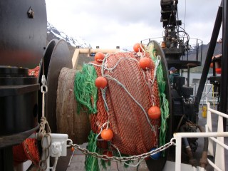 The mid-water trawl net all reeled in.