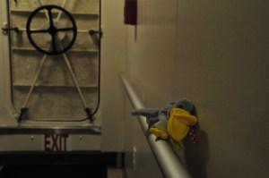 Stuffed pelican sitting on rail in hall