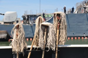 Four white haired mops with buildings in the background