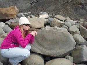 ammonite?