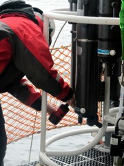 Jeanette collecting water from the CTD.