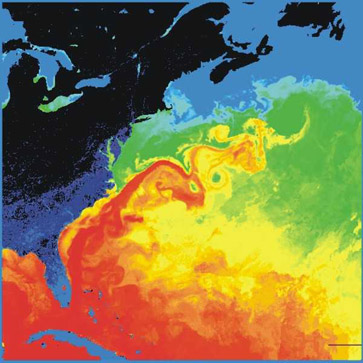 The warm  (Red) Gulf Stream waters viewed from a satellite iamge.