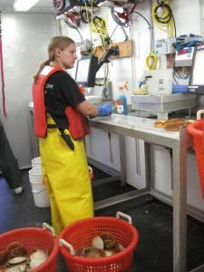 Alicia measure scallop