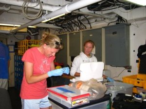Here I am helping Kathy Morrow preserving coral mucus specimens. Photo courtesy of Cory Walter