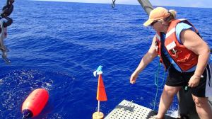 Setting the buoys to mark the location of the BotCam. Uli Uli Manu is along for the ride.