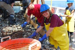 Laurie sorts clam on the fantail of the ship.