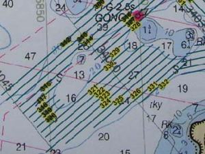 The lines you see make up the grid the survey boats follow. The ones scratched out are the ones we have completed.
