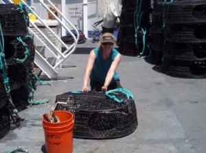 NOAA Teacher at Sea, Maggie Flanagan, repairs a trap aboard NOAA Ship OSCAR ELTON SETTE.