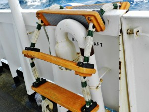 Port ladder to launches alongside Rainier