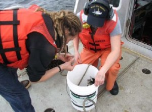 Survey Tech Krynytsky and ENS Villard-Howe (Navigation Officer) gather and examine bottom samples.