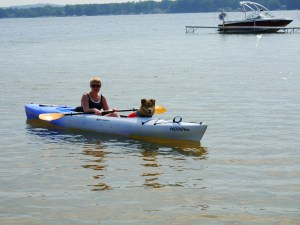 Maddox LOVES the water and is an excellent kayaking companion.