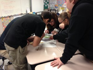 Groups hard at work trying to clean up an oil spill (vegetable oil in water). They had pipettes, yarn, cotton balls, coffee filters, and their brains to figure it out!