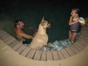 Sabi dog in the pool with granddaughter Morgan