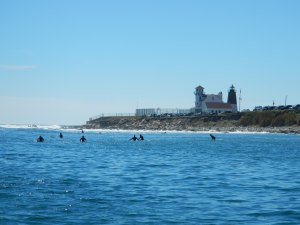 One of our obstructions by Point Judith Lighthouse - surfers!